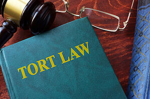 Tort law title on a book and gavel.