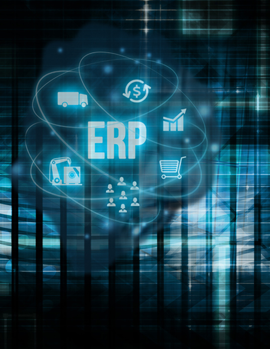 ERP graphic
